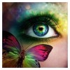 5D DIY Diamond Painting Kits Dream Colored Beautiful Eyes And Butterfly