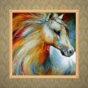 5D DIY Diamond Painting Kits Colorful Horse